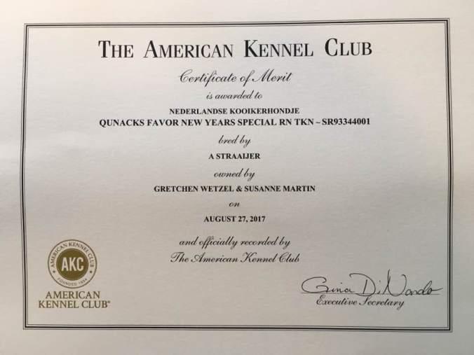 Certificate of Merit! | Criterion Kooikerhondjes